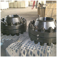 Orifice Flanges Assembly